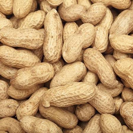 Cacahuetes con cascara
