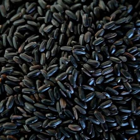 arroz nerone