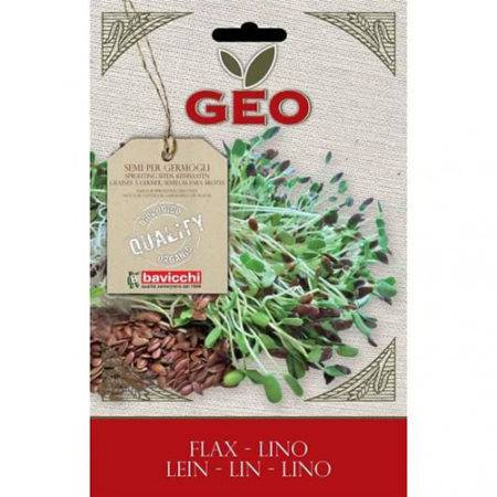 semillas de lino germinar